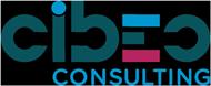 CIBEO Consulting : logiciels de gestion d'entreprise, webmarketing, audit et conseil en informatique