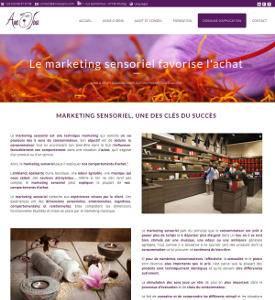 Création d'un site web institutionnel pour une entreprise de Strasbourg